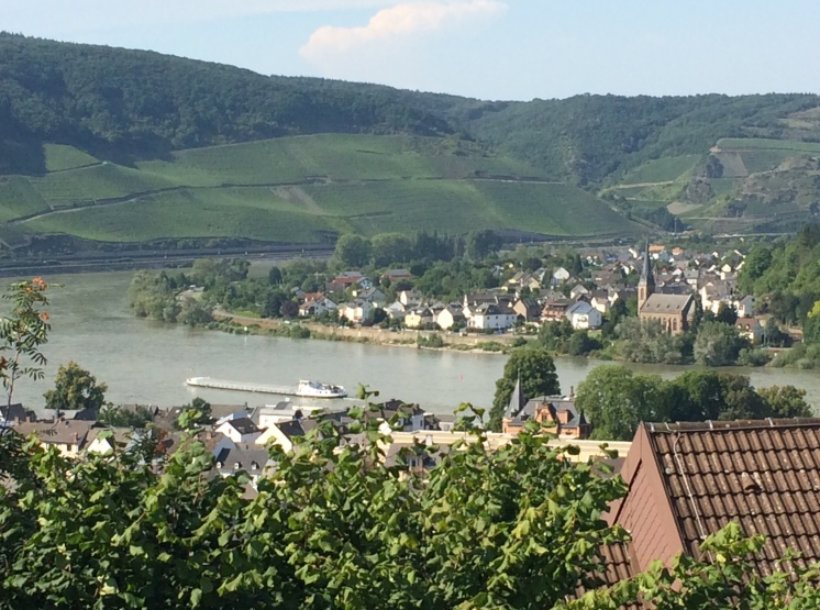 The mighty Rhine