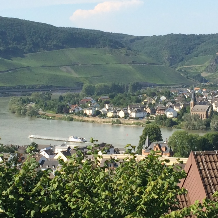 The mighty Rhine
