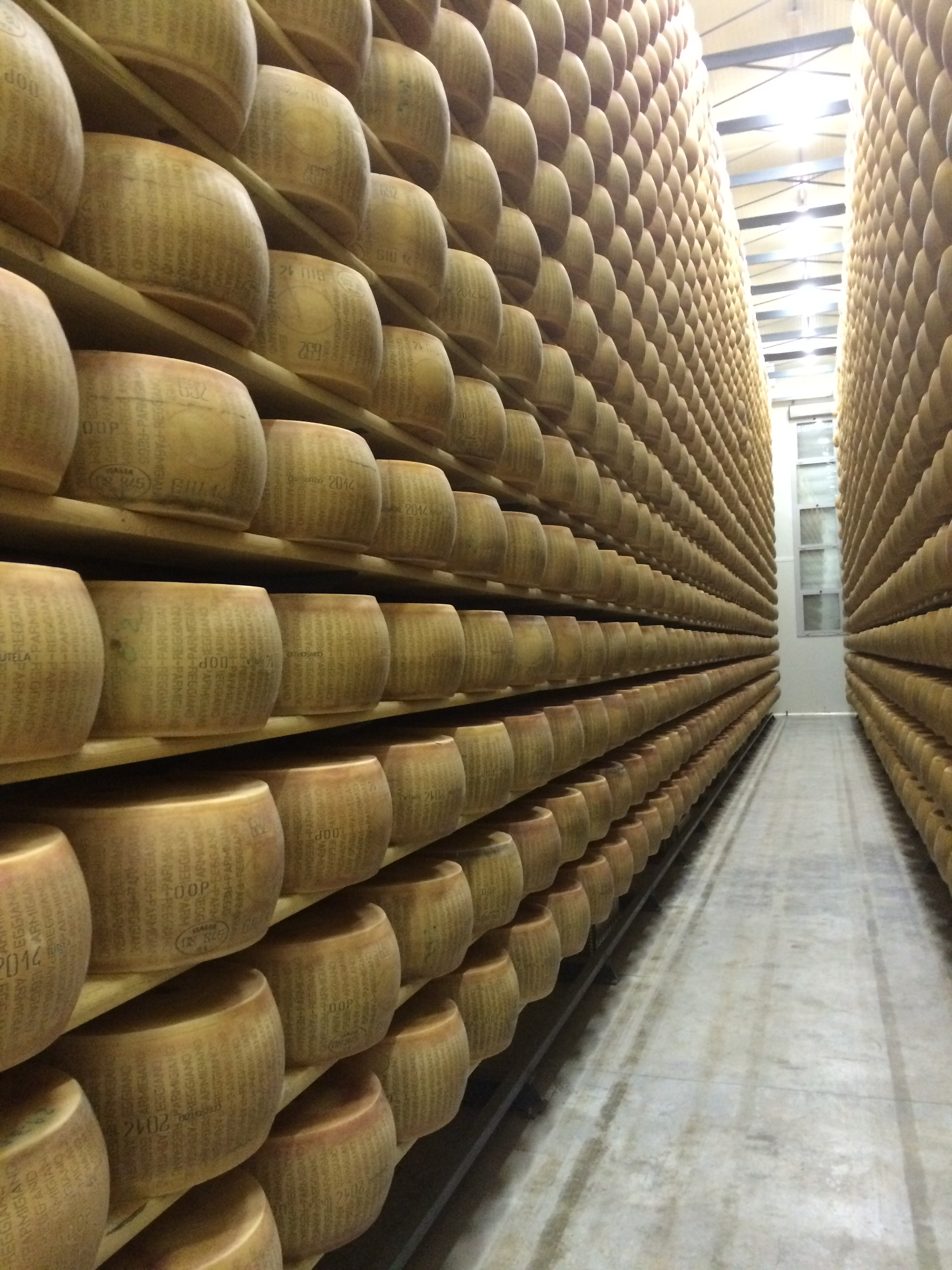 Parmigiano in the San Simone warehouse - the ageing process begins