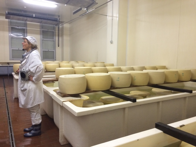 The cheeses are placed in salt baths to give them the distinctive Parmigiano flavour.