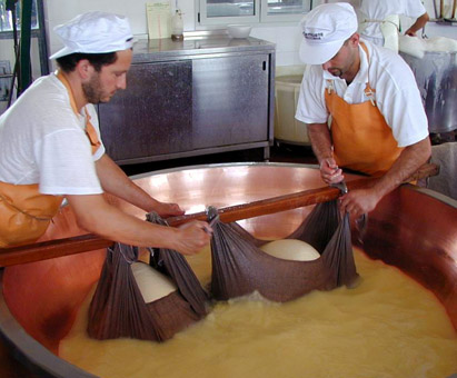 Caseificio San Simone, production of parmigiano cheese