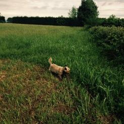 Sasha says I like it here!