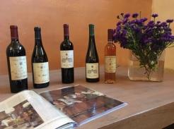 Villa Angarano wines