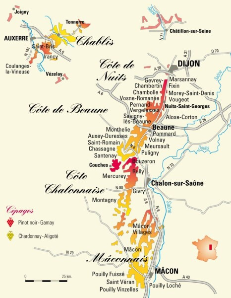 The wines of Burgundy from Dijon to Macon