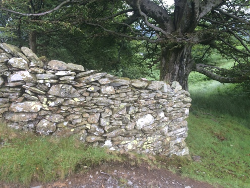 Dry stone walls are everywhere in the Lake District
