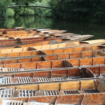 A plethora of punts.......