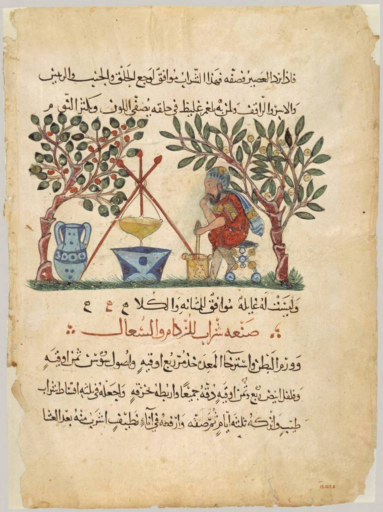 Materia Medica - An Arabic illustration of early medical research