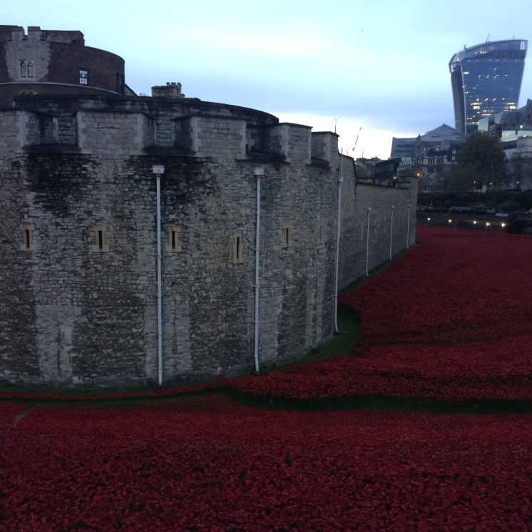 Tower of London, moat with poppy installation