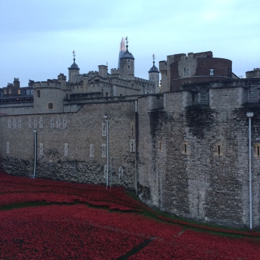 Tower of London - Poppy Installation