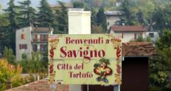 Savigno - truffle city, Valsamoggia (BO)