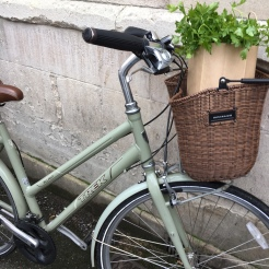 Educated Traveller bike - Oxford