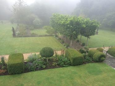 The garden at dawn..