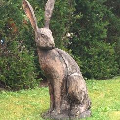 Mr Hare supervises