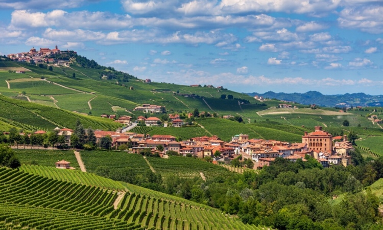 Barolo and its castle, Piedmonte, Italy
