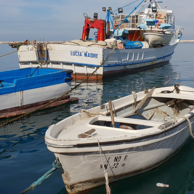Procida harbour, Bay of Naples, Italy - www.educated-traveller.com