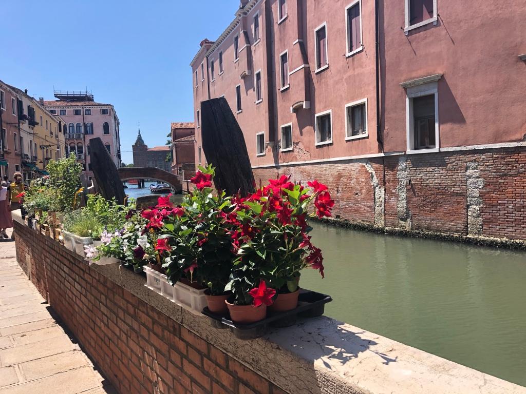 Venice - there's treasure around every corner www.educated-traveller.com