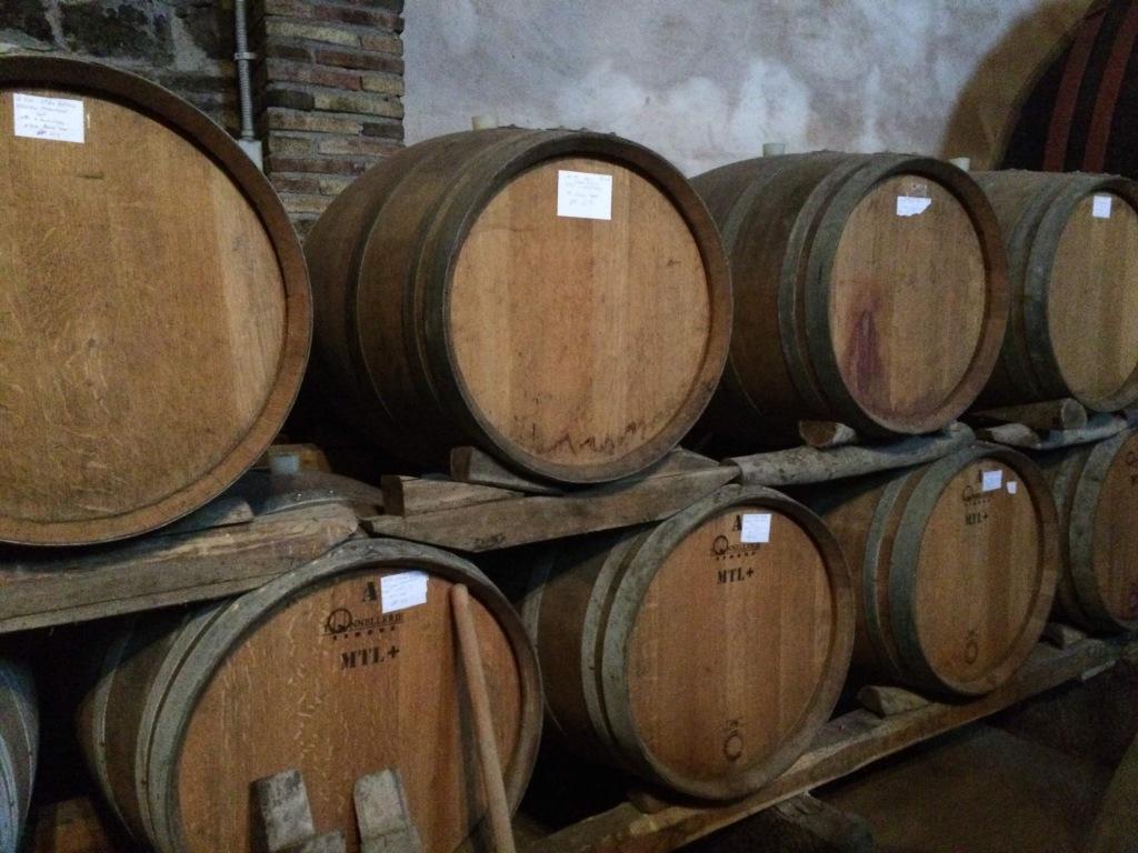 The vineyard wine cellars - Mount Etna