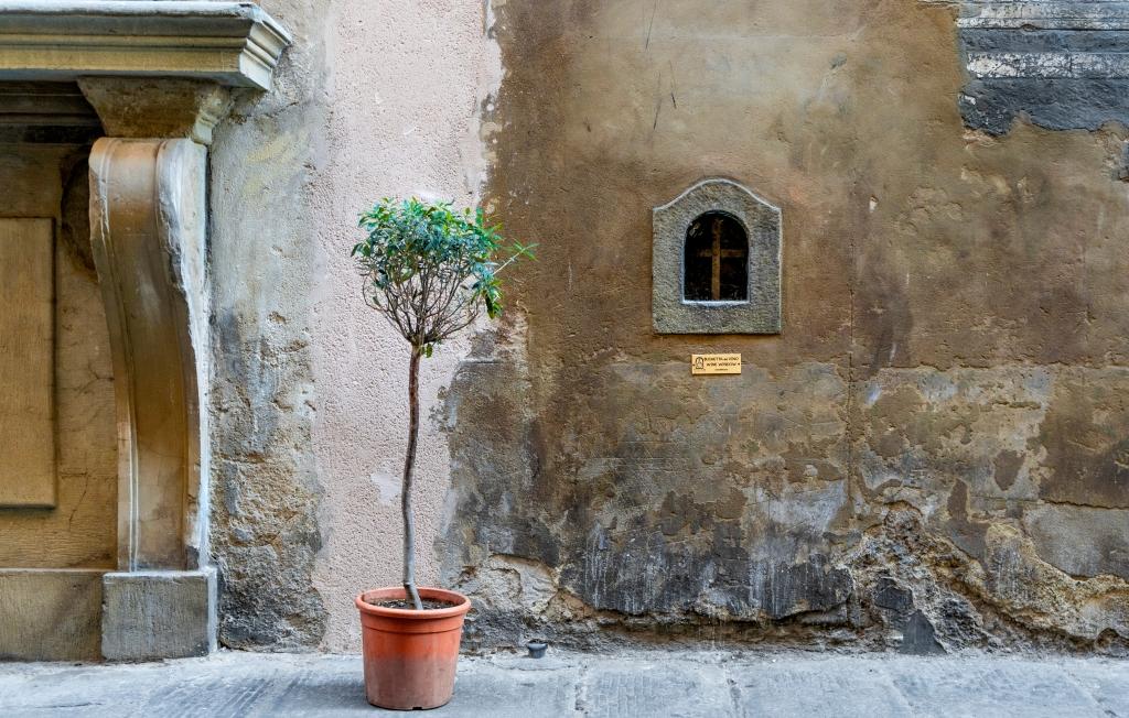 Florence - wine window: shutterstock_1900692034.jpg