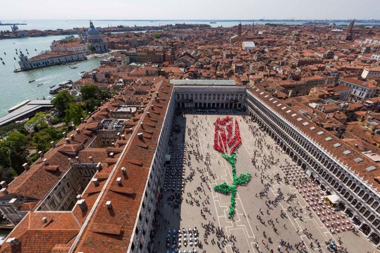 Il Bocolo - San Marco, Venezia - 2014